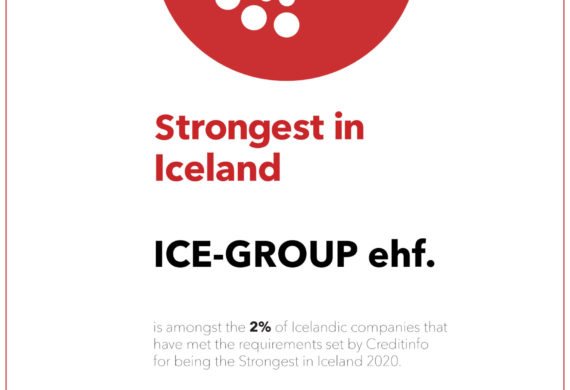 Ice-Group one of the strongest companies 2020